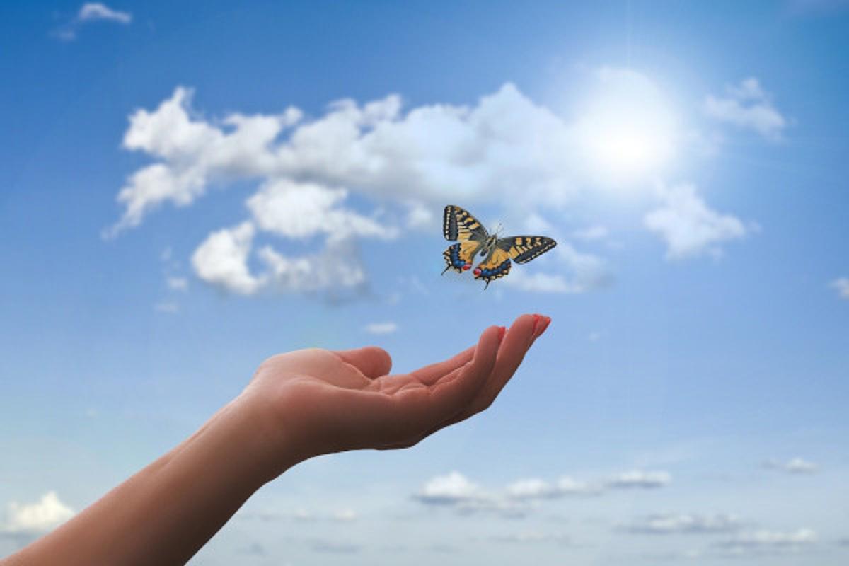 Ein Schmetterling fliegt aus einer Hand hinaus in den Himmel und in die Freiheit.